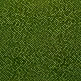 Tela patchwork puntitos verde pistacho sobre verde oscuro 1